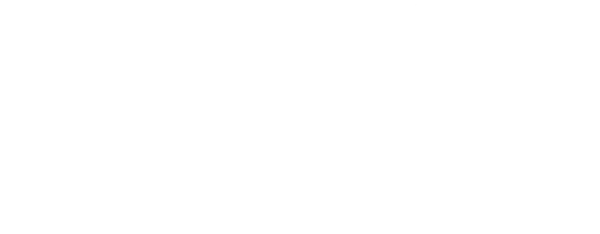 magnacoustics